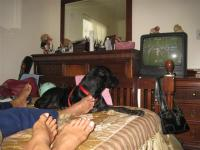 Samy watching the Gators with her new family